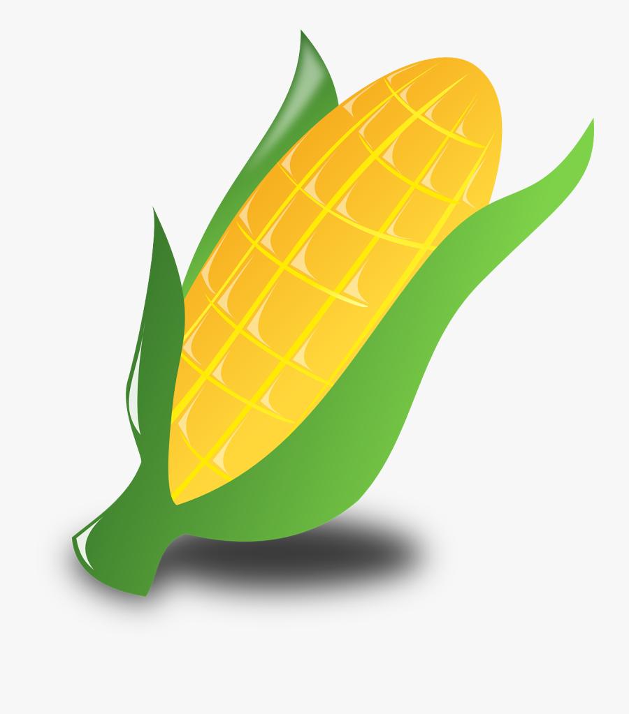 Corn, Crop, Harvest, Vegetables, Maize, Food, Kwanzaa.