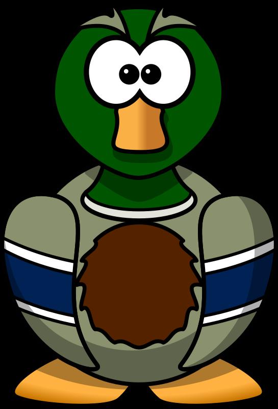 Duck clipart mallard duck, Duck mallard duck Transparent.