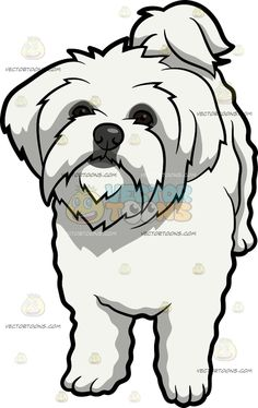 Maltipoo clipart 3 » Clipart Station.