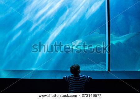 Child Aquarium Stock Images, Royalty.