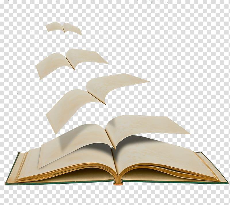 Book Publishing Podologo Felisa Razkin Irigoyen Podologos.