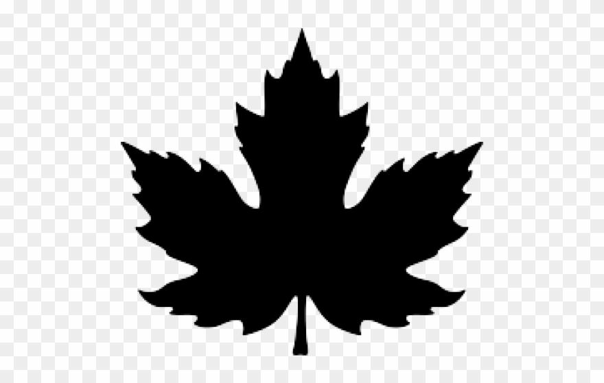 Maple Leaf Clipart November Leaves.