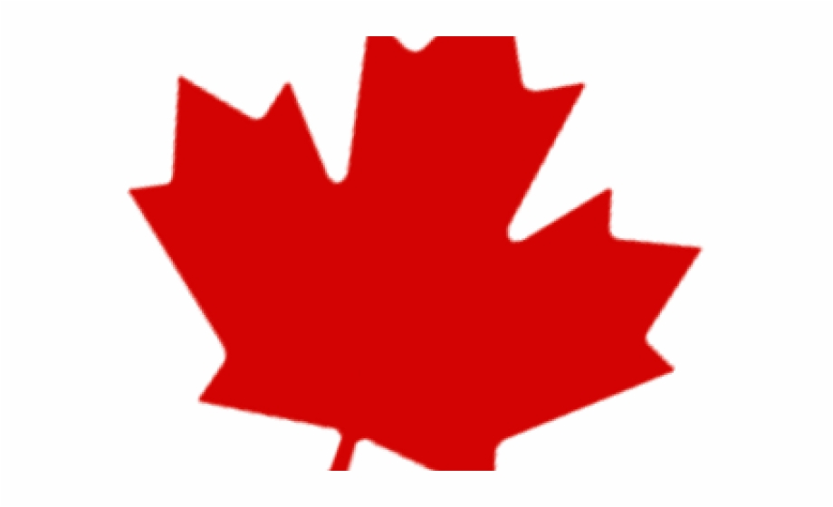 Maple Leaf Clipart Single Green Leave.