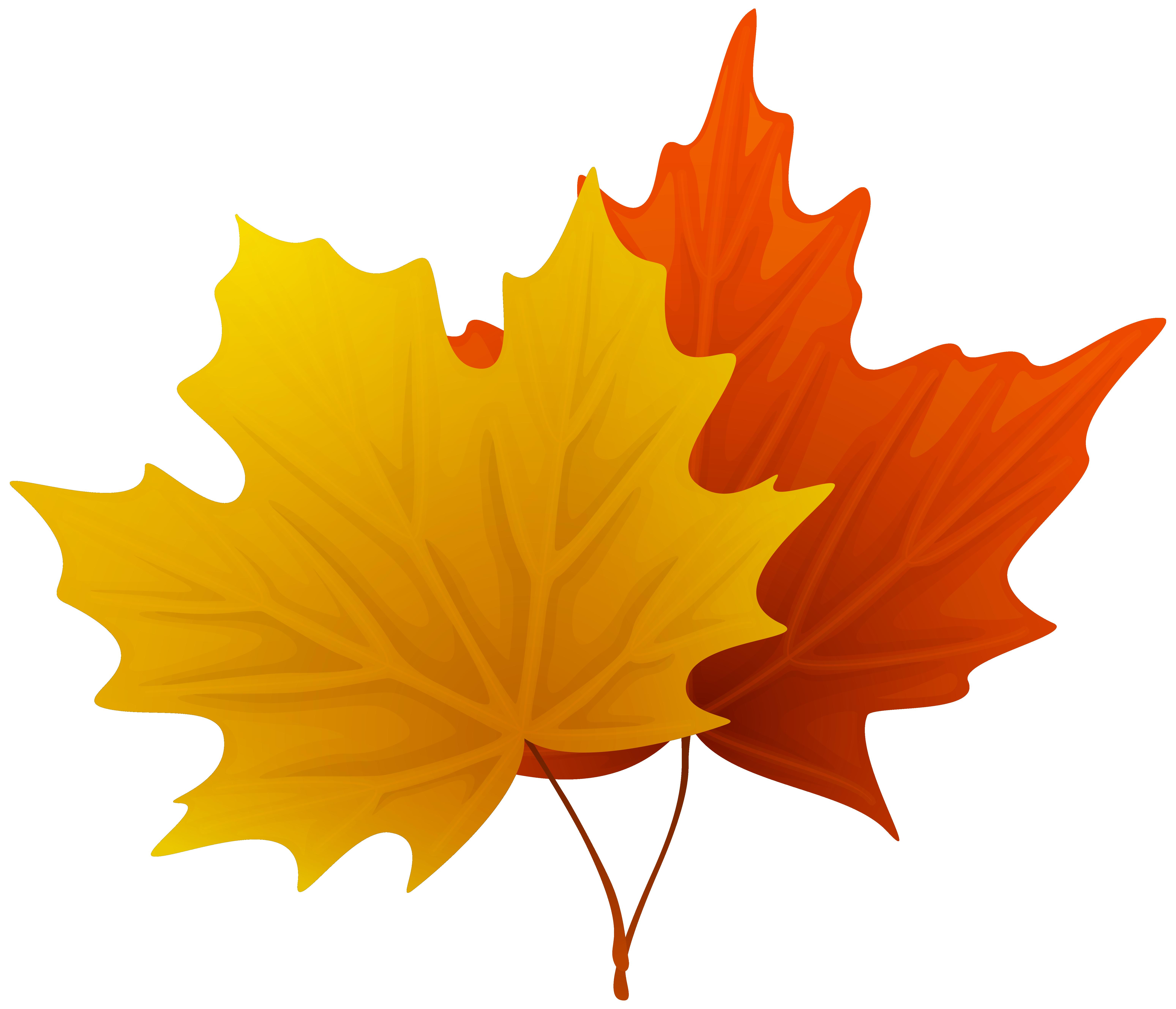 Fall Maple Leaf Clip Art.