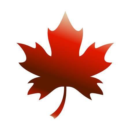 Canadian maple leaf clipart 4 » Clipart Portal.