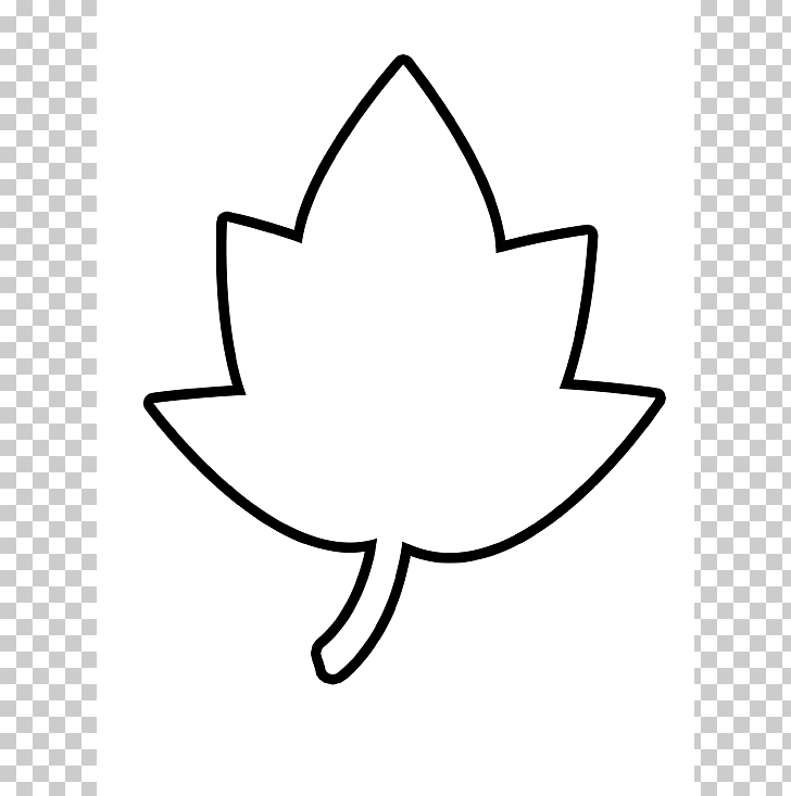 Autumn leaf color Outline Maple leaf , Leaf PNG clipart.