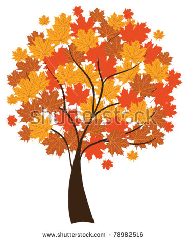 Maple Tree Vector Stock Images, Royalty.
