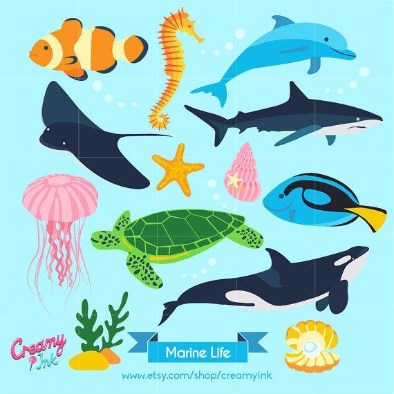 Ocean Digital Vector Clip art / Marine Life Clipart Design.