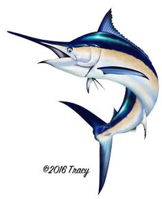 Marlin Jumping Illustration Photoshop clipart http://www.