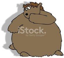 Marmotte ET Son Ombre images vectorielles.