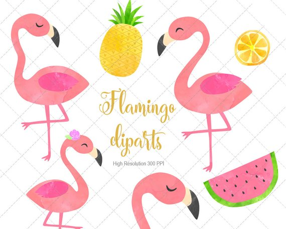 Flamingo Watercolor Cliparts, Flamingo Clip Art, Flamingo.