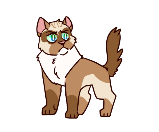 booker\'s cat series.
