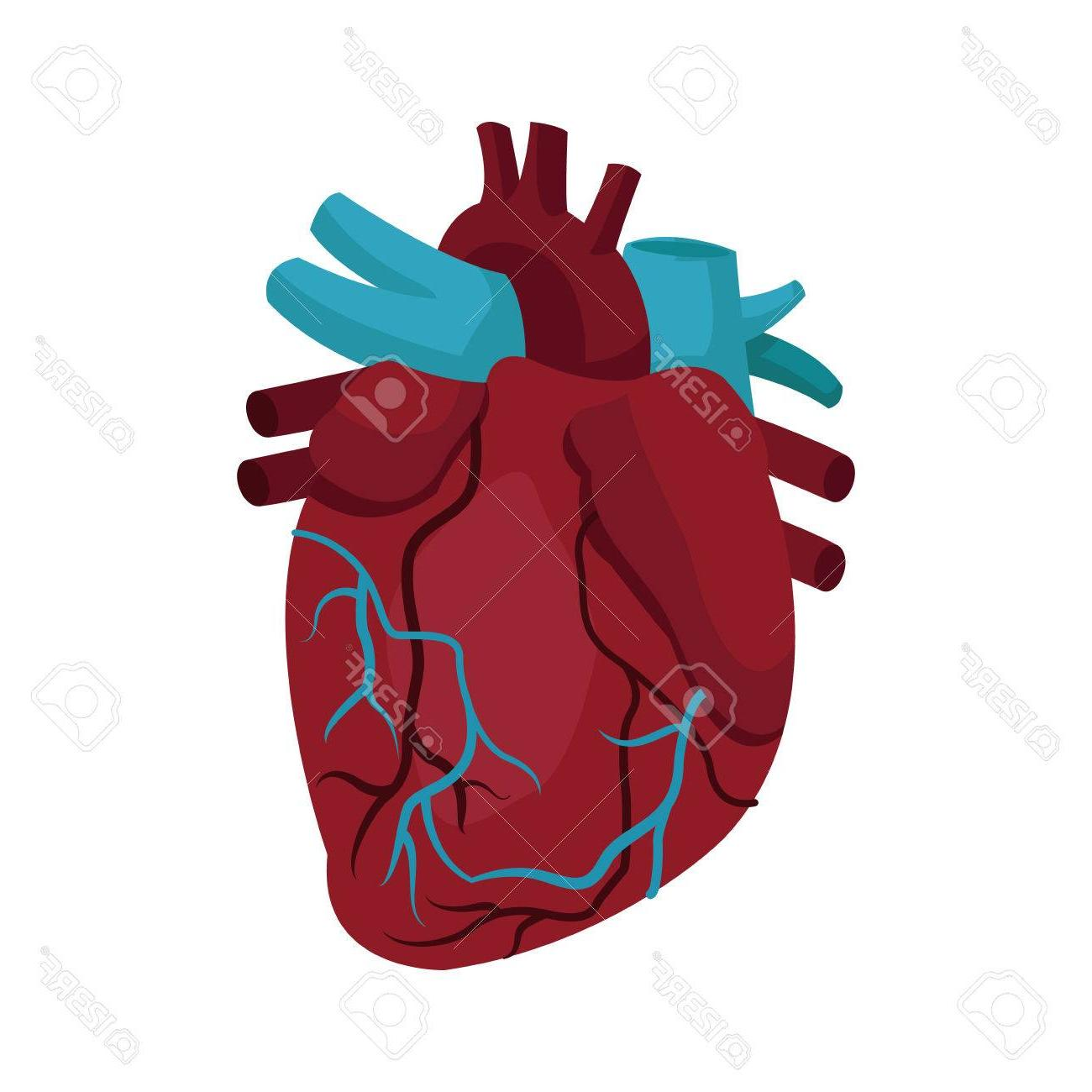 Best Medical Heart Vector Library » Free Vector Art, Images.