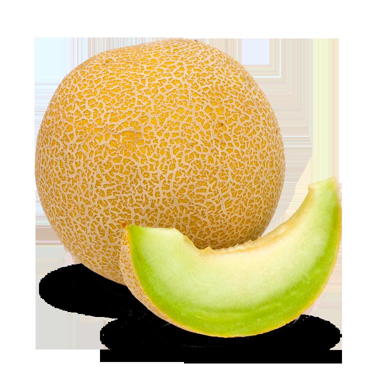 Melon Clipart PNG.