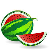 Melone clipart 5 » Clipart Station.