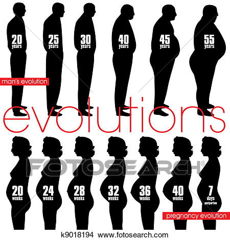 Men obesity evolution and pregnancy Clipart.