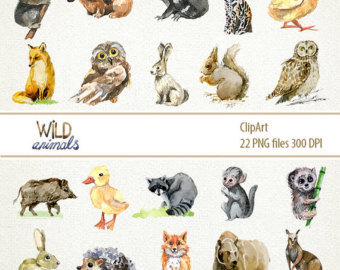 Pet And Wild Animals Clipart.