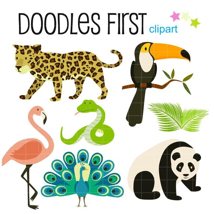 17 best ideas about Rainforest Animals List on Pinterest.
