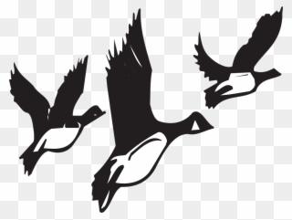 Free PNG Migration Clip Art Download.