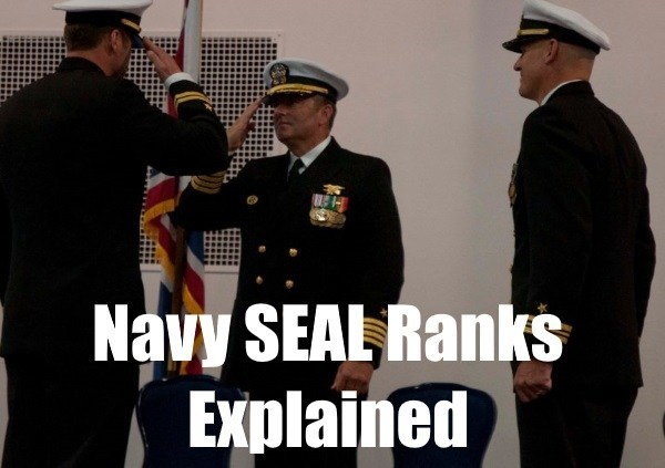 US Navy SEALs Rank Structure, Insignia, And Pay [Updated 2019].
