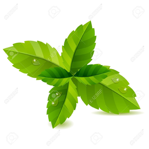 Free Clipart Mint Leaves.