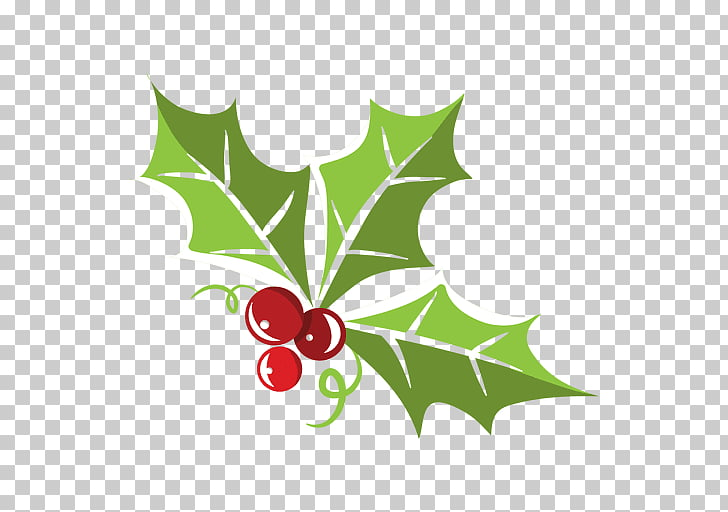 Mistletoe , others PNG clipart.
