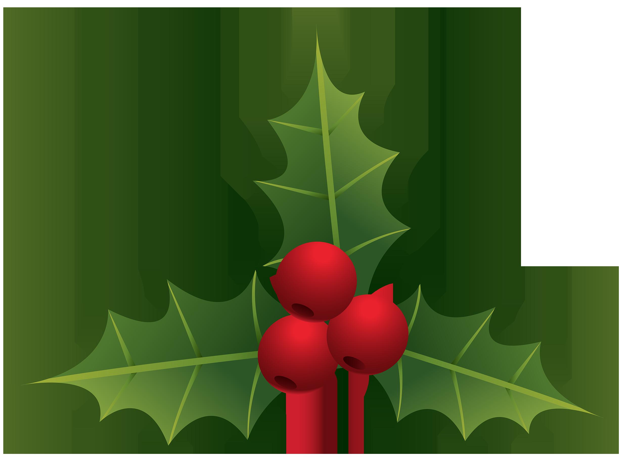 Mistletoe PNG Clipart.