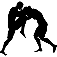 Download Mixed Martial Arts Free PNG photo images and clipart.
