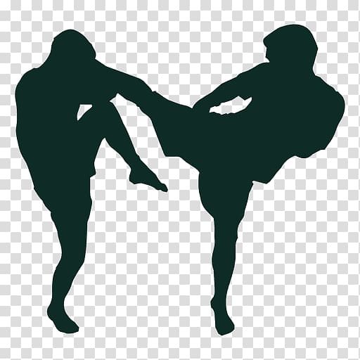 Mixed martial arts Boxing glove Punching & Training Bags, knee.