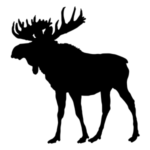 Moose Silhouette clipart, cliparts of Moose Silhouette free download.