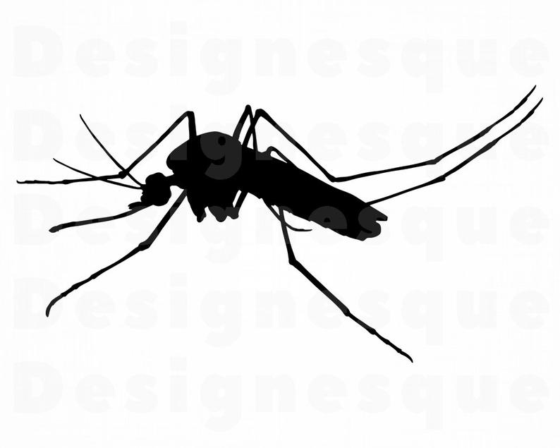 Mosquito SVG, Mosquito Clipart, Mosquito Files for Cricut, Mosquito Cut  Files For Silhouette, Mosquito Dxf, Mosquito Png, Eps, Vector.