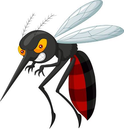 11,354 Mosquito Stock Illustrations, Cliparts And Royalty Free.