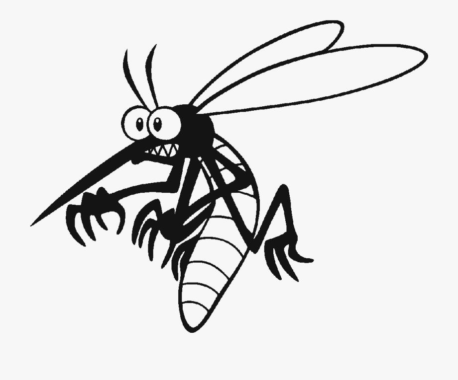 Mosquito Cartoon Png , Transparent Cartoon, Free Cliparts.
