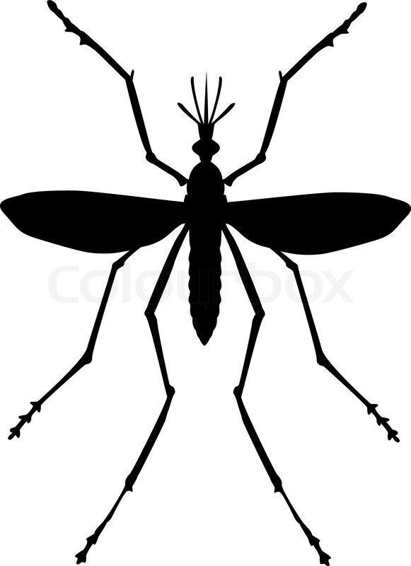Stock vector of \'Mosquito\'.