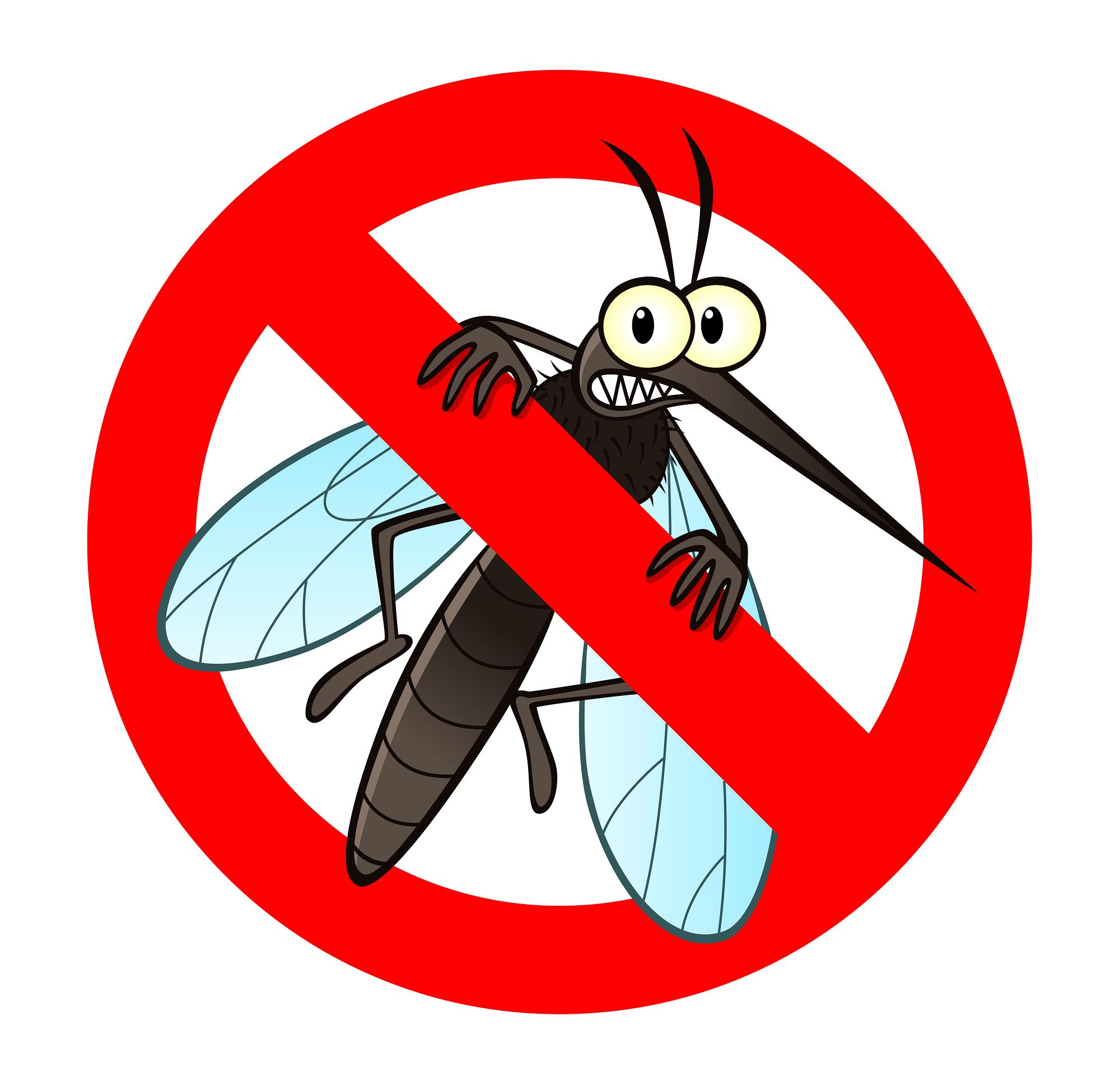 Mosquito clipart pesky, Mosquito pesky Transparent FREE for.