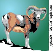 Mouflon Clip Art.