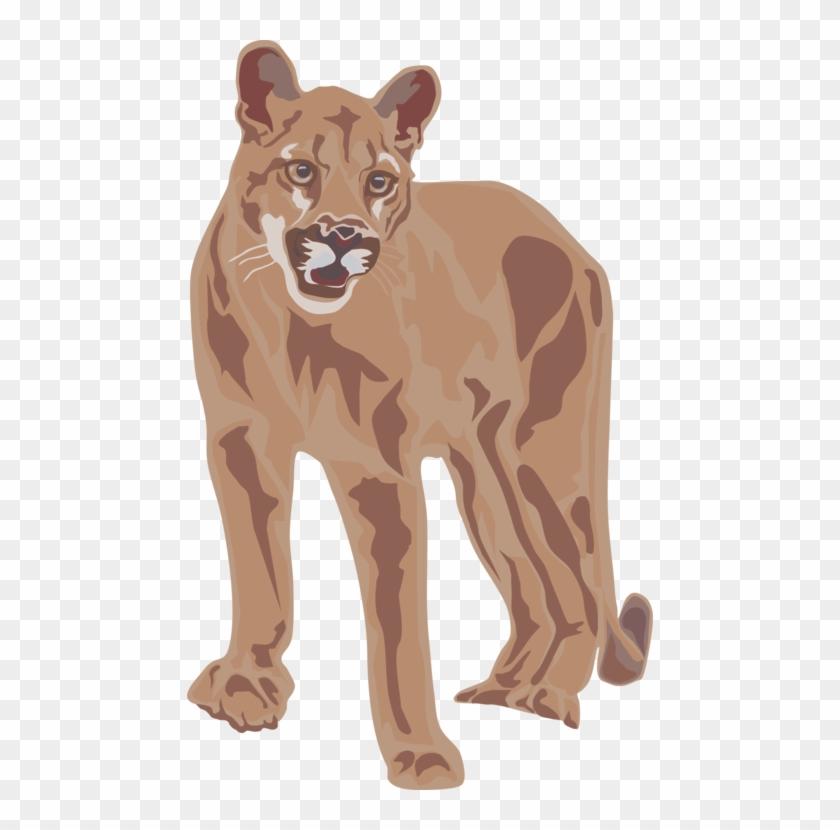 Cougar Lion Download Document Big Cat.