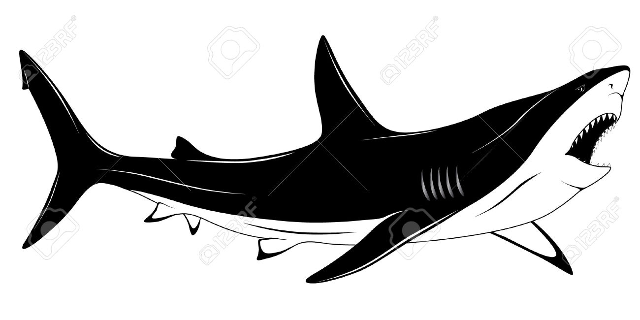 Predatory Shark With An Open Mouth In The Form Of A Tattoo Royalty.