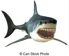 Great white shark Illustrations and Clipart. 1,034 Great white.