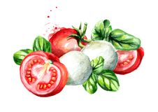 Mozzarella Stock Illustrations.