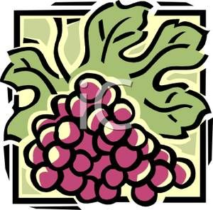 A Bunch of Purple Grapes Clipart Picture.