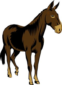 22 Best mule clipart images in 2019.