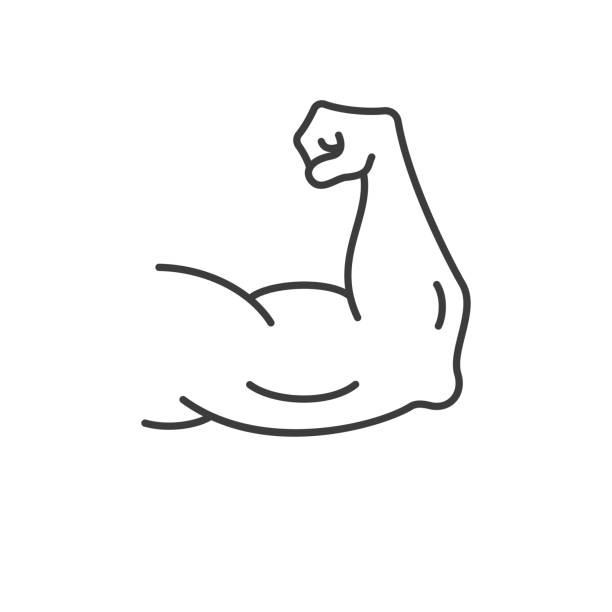 Muscle clipart stong, Muscle stong Transparent FREE for.