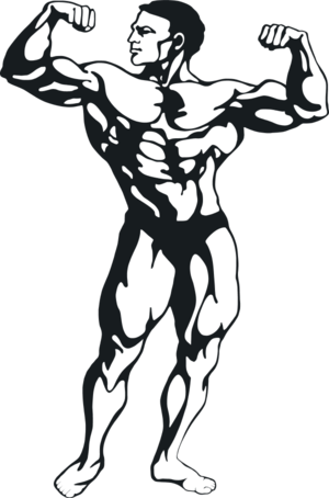 Muscular Man Clipart.