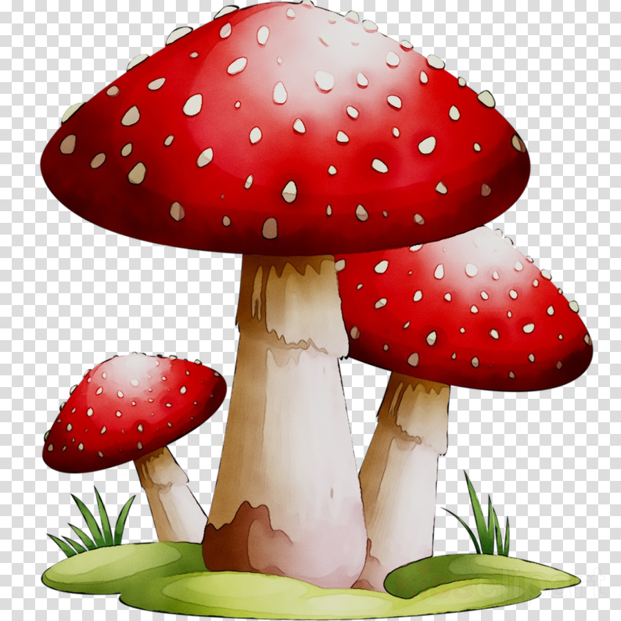 Mushroom Cartoon clipart.