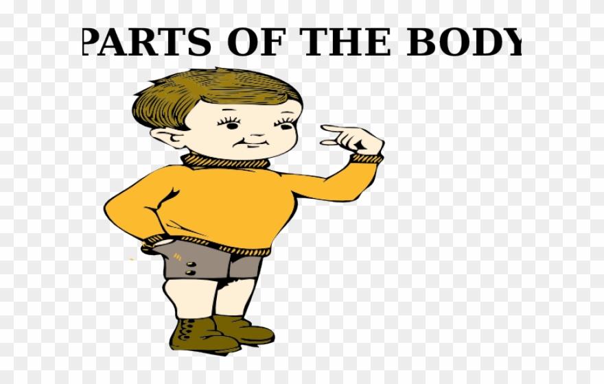 Body Clipart My Body.