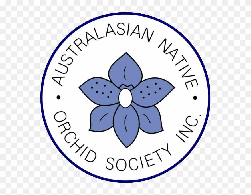 Australasian Native Orchid Society Clipart (#3115544.
