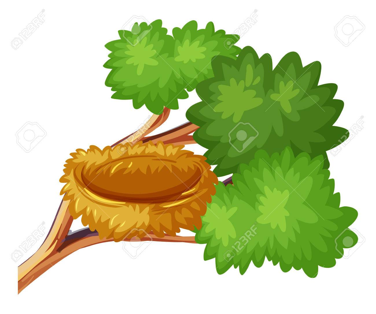 Bird nest on the branch illustration.