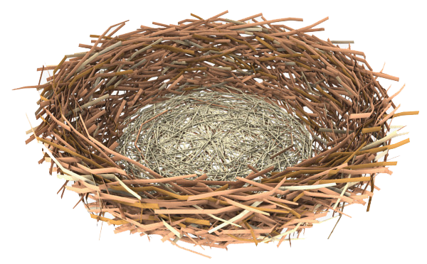 Download Nest PNG Clipart 301.