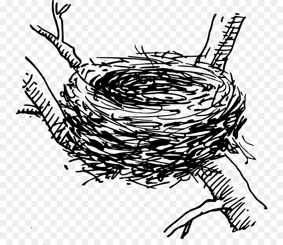 Nest Black And White PNG Bird Nest Clipart download.